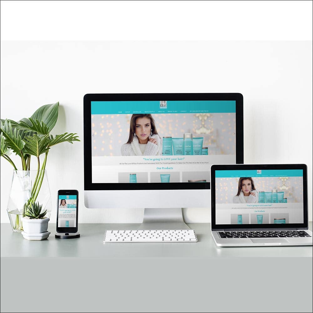 website-design-conejo-valley-california